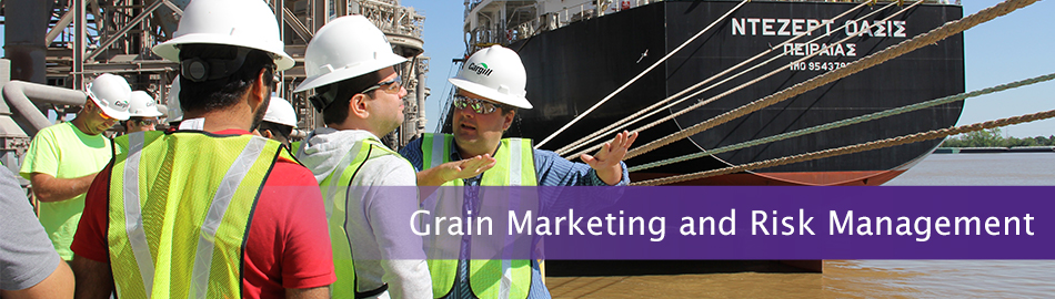 Grain Marketing