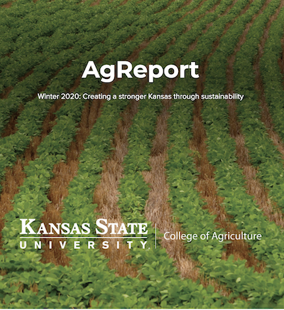 Ag Report 20